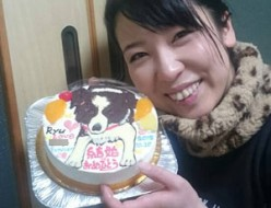 犬のイラストケーキ