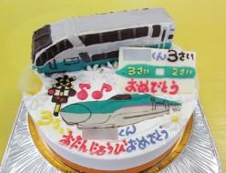 スーパービュー踊り子電車ケーキ